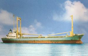 不定期船サービス